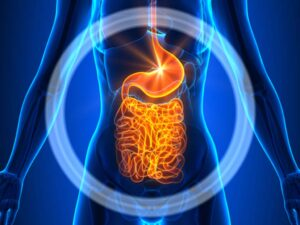 CBD and Irritable Bowel Syndrome 1